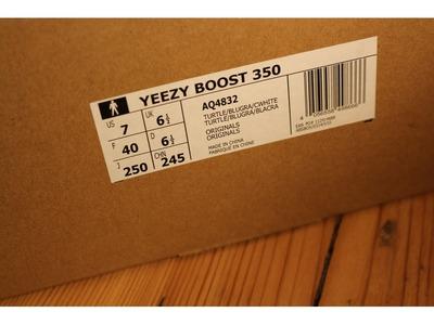 Image of Adidas Yeezy Boost 350 Turtle Dove US7