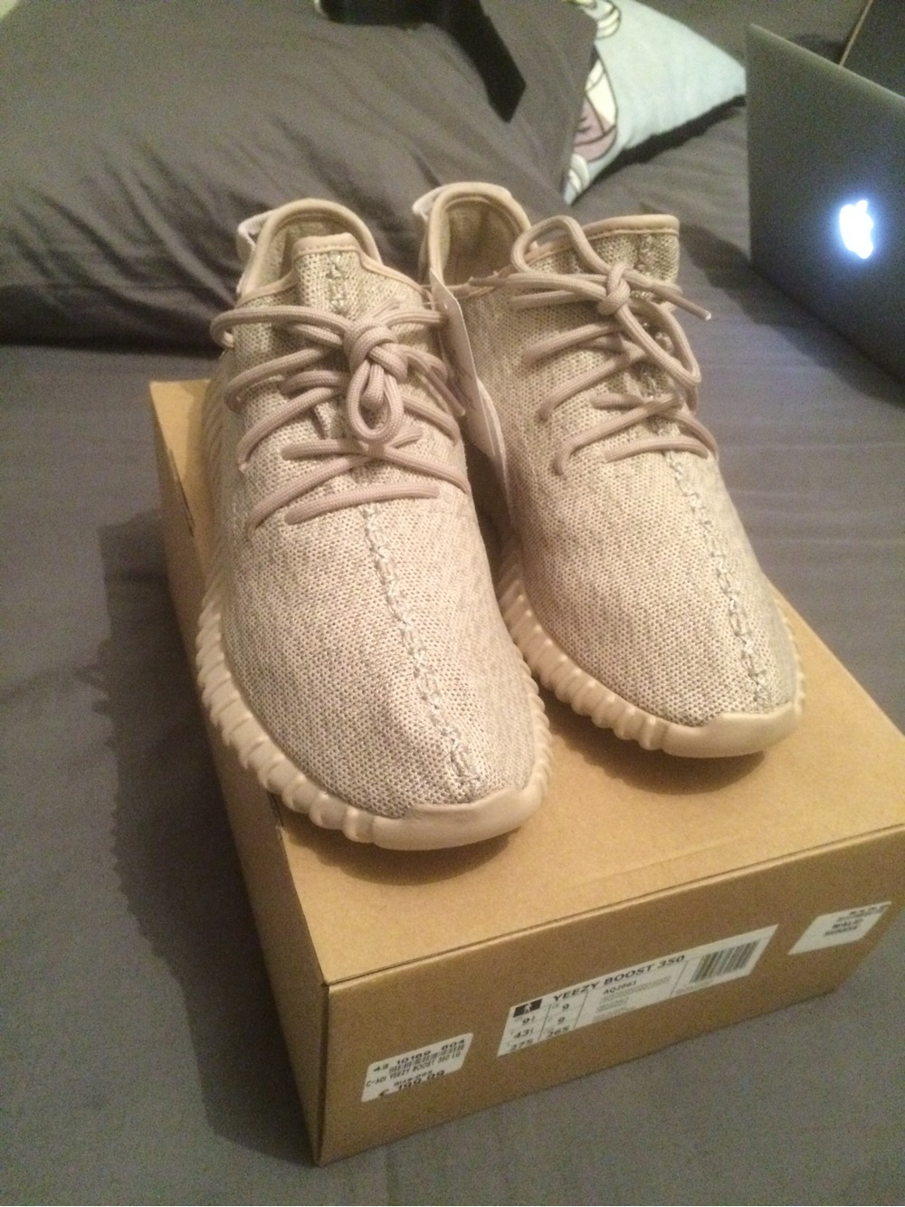 adidas yeezy boost 350 oxford